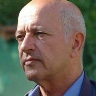 דן וולמן